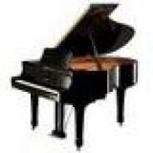 Vleugel en Piano verhuur