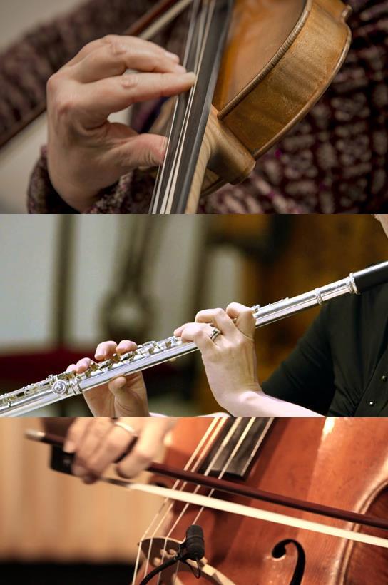 Boccherini trio (Instrumenten)